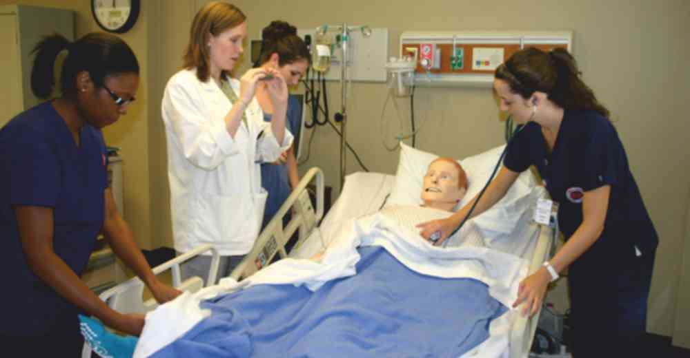 Nursing Programs Grow in Medical | Insights Care
