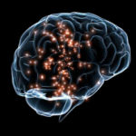 Scientists_Identified_100_memory_genes_Opening_New_Opportunities_for_In-Depth_Brain_Study - Insightscare