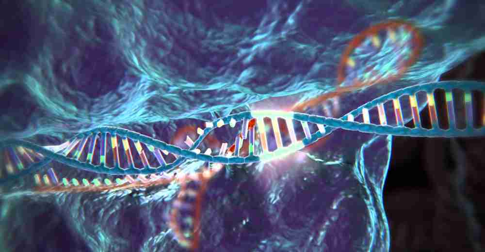 CRISPR-Cas9 Technology | Insights Care