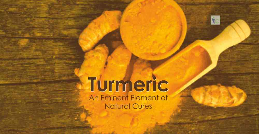 Turmeric | Insights Care