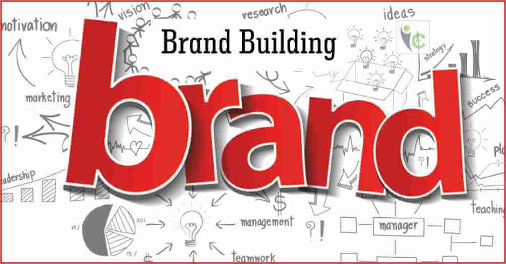 Brand Building | Insights Care